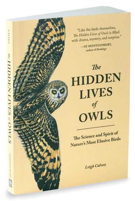 The Hidden Lives of Owls